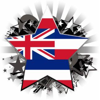 Estrella de Hawaii Esculturas Fotográficas