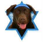 Estrella de Jánuca de David - chocolate Labrador Esculturas Fotograficas