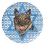 Estrella de Jánuca de David - Vallhund - oso Plato