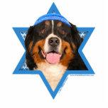 Estrella de Jánuca del perro de David - de montaña Esculturas Fotograficas