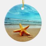 Estrella de mar en la playa, cielo azul, océano adornos de navidad