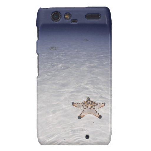 Estrella de mar en submarino inferior arenoso motorola droid RAZR fundas