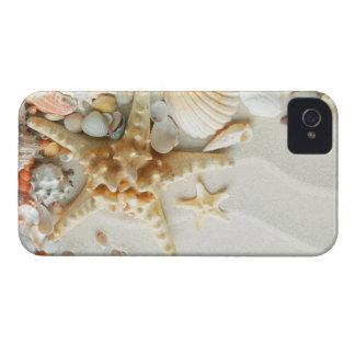 Estrella de mar y seashell en el caso del iphone 4 Case-Mate iPhone 4 carcasas