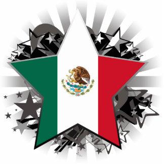 Estrella de México Escultura Fotográfica
