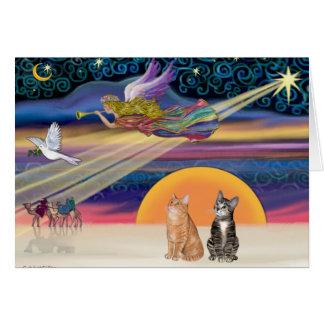 Estrella de Navidad - gatos de Tabby de Brown y de Tarjeta De Felicitación
