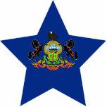 Estrella de Pennsylvania Esculturas Fotográficas