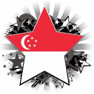 Estrella de Singapur Escultura Fotografica