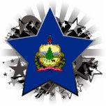 Estrella de Vermont Escultura Fotografica