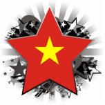 Estrella de Vietnam Escultura Fotografica