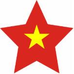 Estrella de Vietnam Escultura Fotográfica