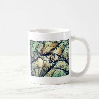 Estrella del áloe tazas de café