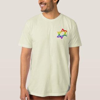 Estrella del arco iris del camisetas de David Playera