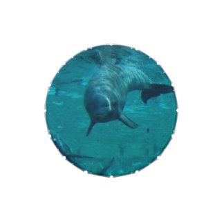 Estrella del delfín jarrones de caramelos