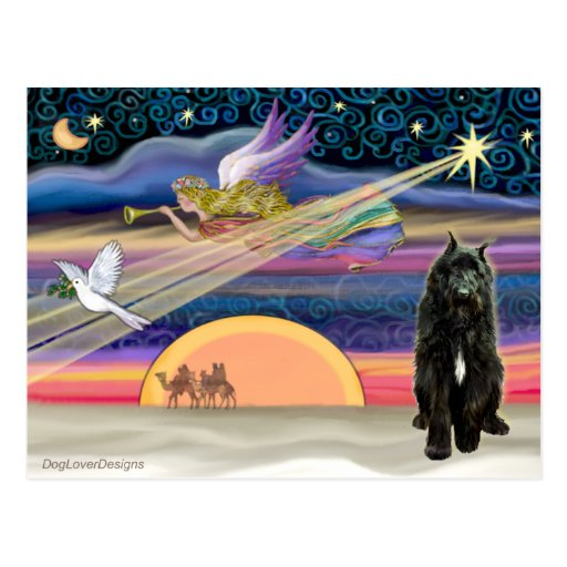 Estrella del navidad - Bouvier Tarjetas Postales