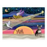 Estrella del navidad - chihuahua (azul-crema) postal