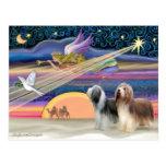 Estrella del navidad - collies barbudos (dos) tarjetas postales