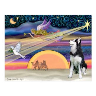 Estrella del navidad - husky siberiano 1 postal