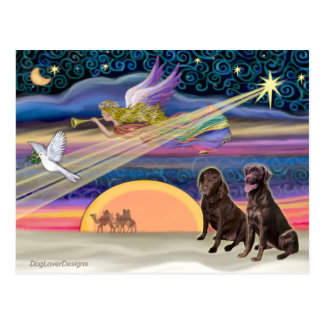 Estrella del navidad - Labradors (chocolate dos) Tarjetas Postales