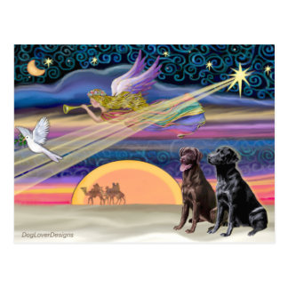 Estrella del navidad - Labradors (dos, C+B) Tarjetas Postales