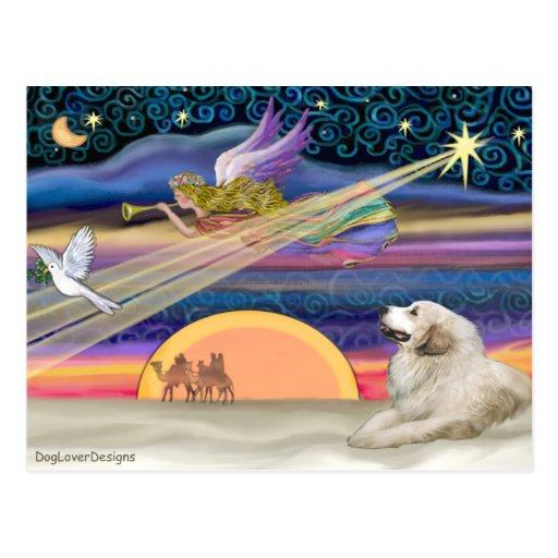 Estrella del navidad - los grandes Pirineos 1 Tarjeta Postal