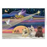 Estrella del navidad - mojón Terrier (tres) - Tarjeton