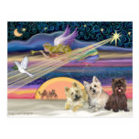 Estrella del navidad - mojón Terrier (tres) - Postales