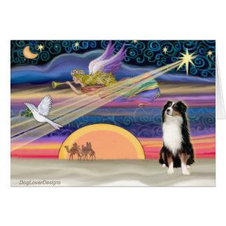 Estrella del navidad - pastor australiano (tri) tarjeta de felicitación