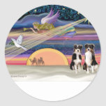 Estrella del navidad - pastores australianos (dos etiqueta redonda