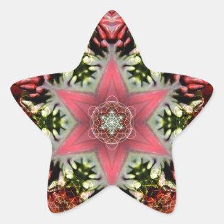 Estrella del navidad pegatinas forma de estrellaes