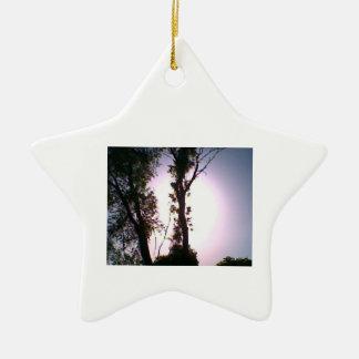 estrella del ornamento de DNatureofDTrain del árbo Ornamento Para Arbol De Navidad