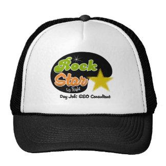 Estrella del rock por noche - consultor del trabaj gorras