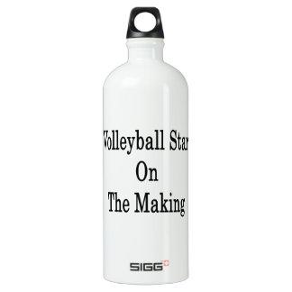 Estrella del voleibol en la fabricación
