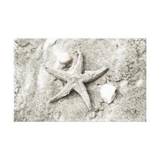 Estrella en la arena lienzo envuelto para galerias