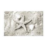 Estrella en la arena lona estirada galerías