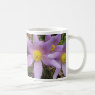 Estrella púrpura taza