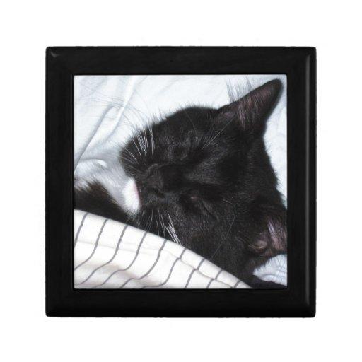 Estrella solitaria - siesta del gatito joyero cuadrado pequeño