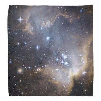 Estrellas brillantes de NGC 602 Bandanas