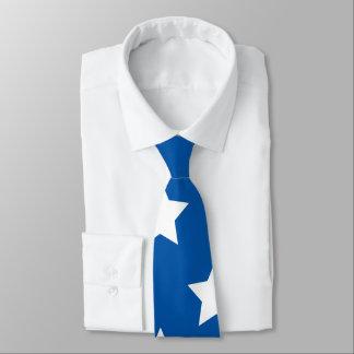 Estrellas de la bandera americana corbata personalizada