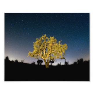 Estrellas de la noche arte fotográfico