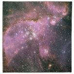Estrellas de los jóvenes con las servilletas rosad