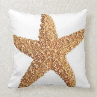 Estrellas de mar aisladas en blanco almohadas