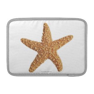 Estrellas de mar aisladas en blanco funda para macbook air