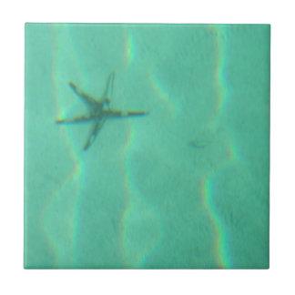 Estrellas de mar tejas  cerámicas