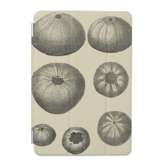 Estrellas de mar blancos y negros cubierta de iPad mini