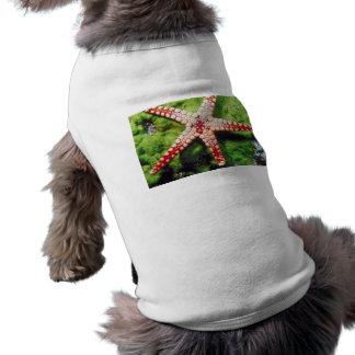 Estrellas de mar camisa de perrito