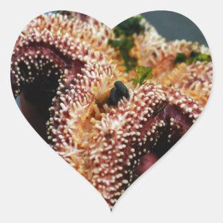 Estrellas de mar/caso de Phone'iPad del océano Pegatina En Forma De Corazón