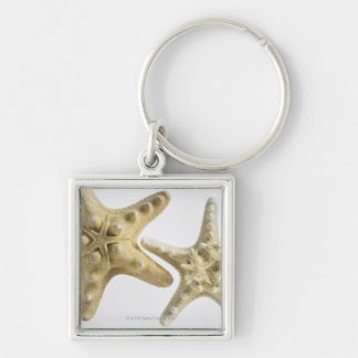 Estrellas de mar del azúcar en una estrella de mar llavero cuadrado plateado
