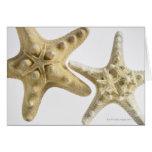 Estrellas de mar del azúcar en una estrella de mar tarjeta