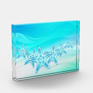 Estrellas de mar del premio