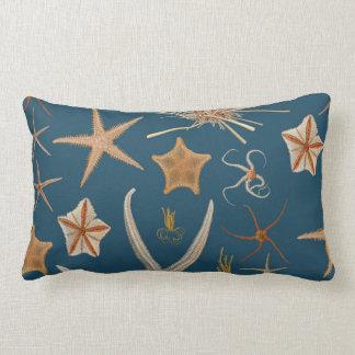 Estrellas de mar del vintage cojines